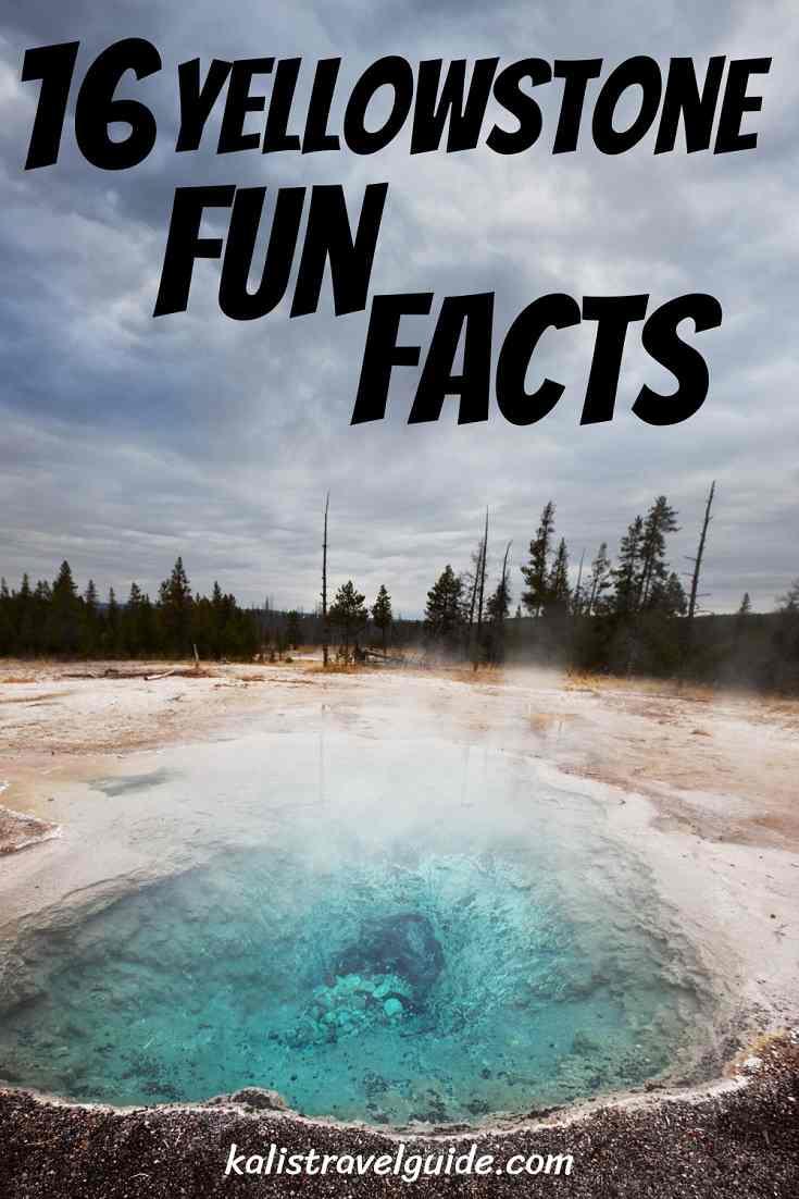 Yellowstone Fun Facts