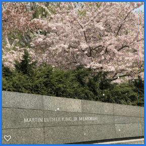 destination washington dc MLK Memorial