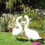 Honeymoon in Tulum